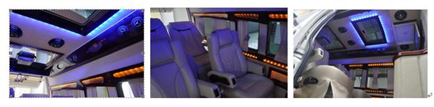 Minibus VIP