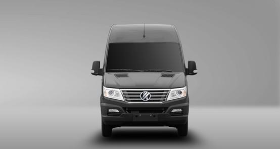 minibus 19