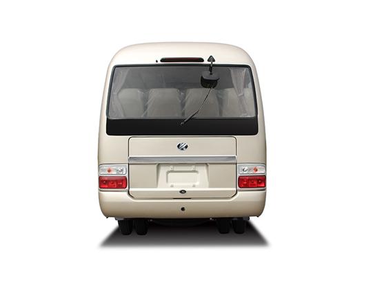 Minibus 2019