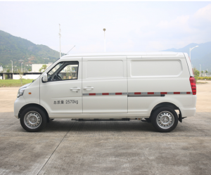 Important news about electric vehicles, including electric small van in overseas markets